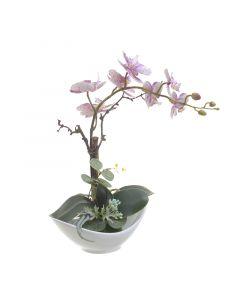 Λουλούδι Σε Γλάστρα - 3-85-246-0201