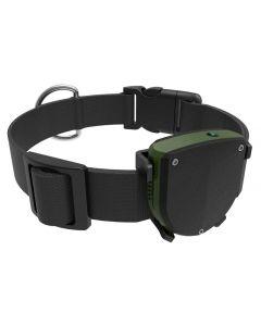 INTIME GPS tracker με κολάρο για κατοικίδια IT-043, IP67 IT-043 id: 41664